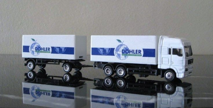 MAN Truck Döhler